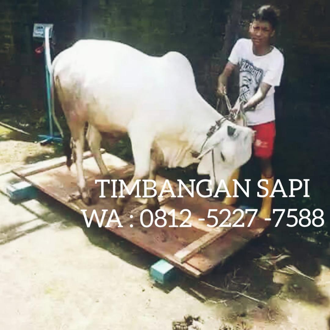 SERVICE TIMBANGAN SAPI DIGITAL SURABAYA